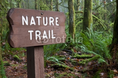 trail nature